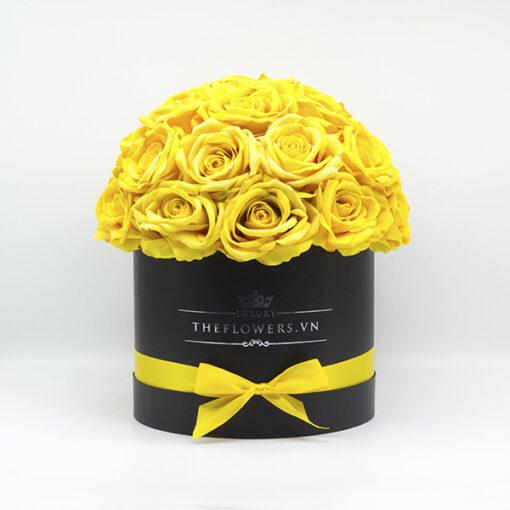 Hoa Lụa Màu Vàng - Hộp Tròn Đen