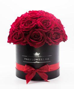 Hoa Lụa Màu Đỏ - Hộp Tròn Đen