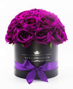 Hoa Lụa Màu Tím - Hộp Tròn Đen