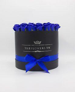 Hoa Sáp Màu Xanh Biển - Hộp Tròn Đen