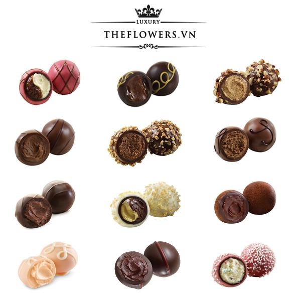 Socola-Godiva-Signature-Chocolate-Truffles-hop-24-vien