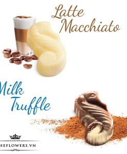 socola-guylian-sea-horses-assortment-148g-milk-truffle