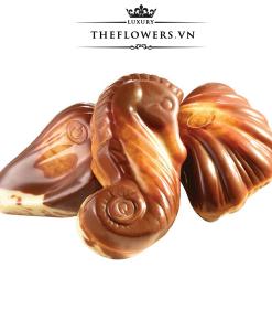 socola-guylian-sea-shells-original-praline-500g-vo-so