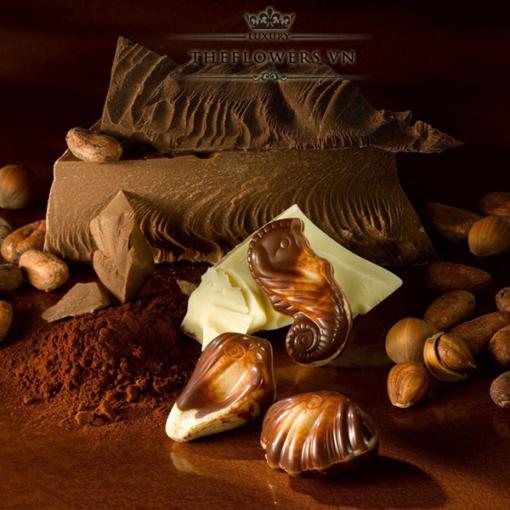 Socola-Guylian-Sea-Shells-Original-Praliné-hop-qua-250g-Bi