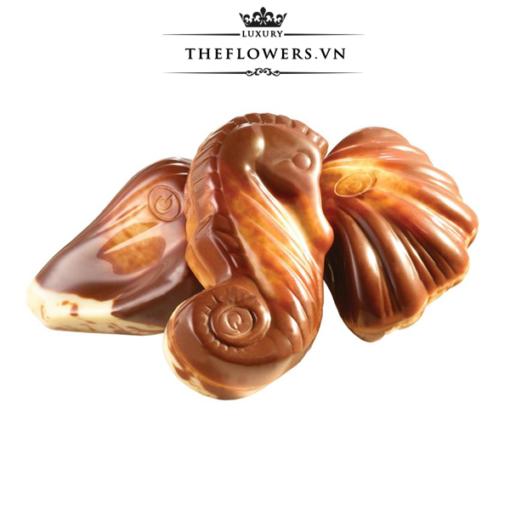 Socola-Guylian-Sea-Shells-Original-Praliné-hop-qua-250g-cua-Bi