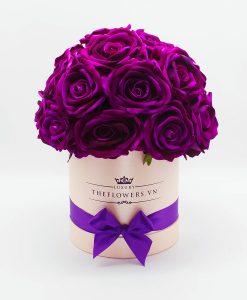 Hoa hồng lụa màu tím hộp màu hồng- điện hoa 20 10
