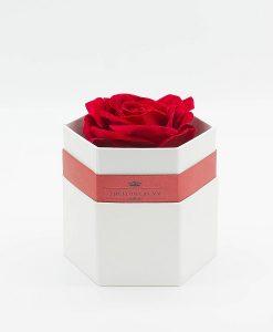 Hoa hồng một bông hình lục giác màu trắng