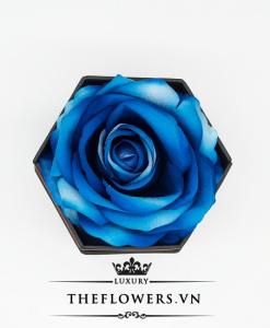 Hoa hồng một bông xanh hộp hình lục giác