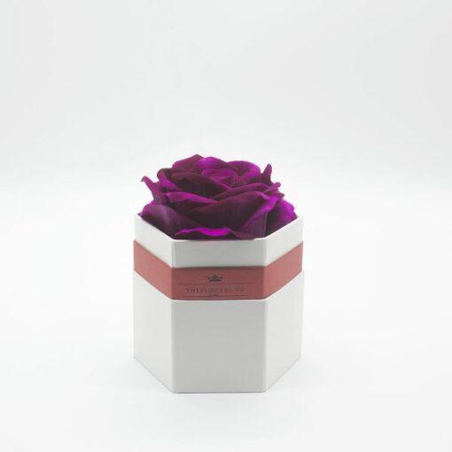 Hộp hoa hồng một bông màu tím