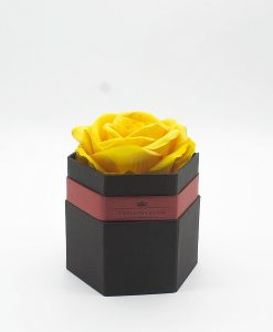 Hộp hoa hồng một bông màu vàng hình lục giác màu đen