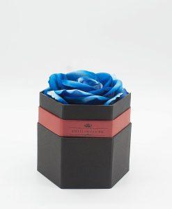 Hoa hồng một bông xanh Hộp hình lục giác màu đen