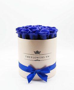 Hoa hồng sáp màu xanh biển hộp tròn hồng