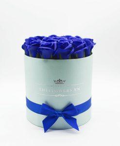 Hoa hồng sáp màu xanh biển hộp tròn xanh dương