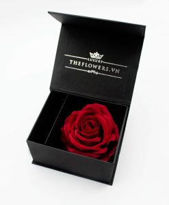 hộp hoa hồng một bông đựng son