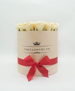 Hoa sáp màu kem hộp tròn hồng