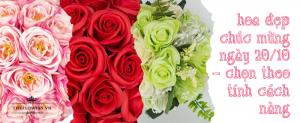 Hoa đẹp chúc mừng ngày 20 10