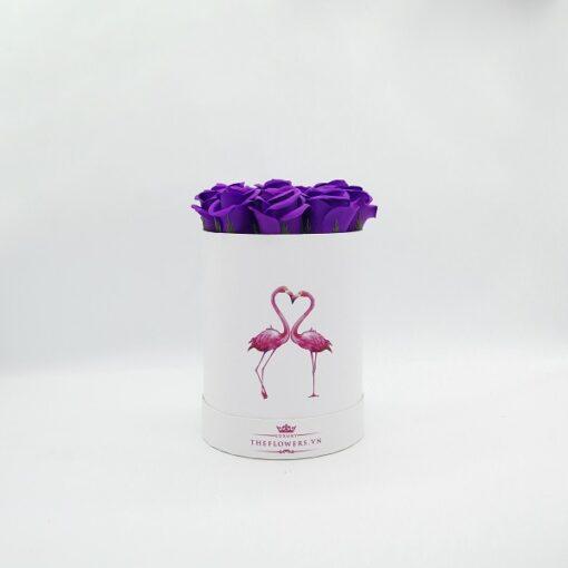 Hoa sáp màu tím